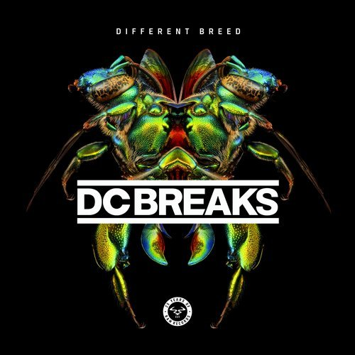 DC Breaks ‎– Different Breed [RAM Records][RAMMLP27](2017)