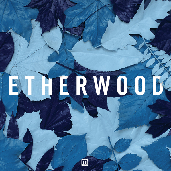 Etherwood — Blue Leaves [Med School Music][MEDIC52](2015)