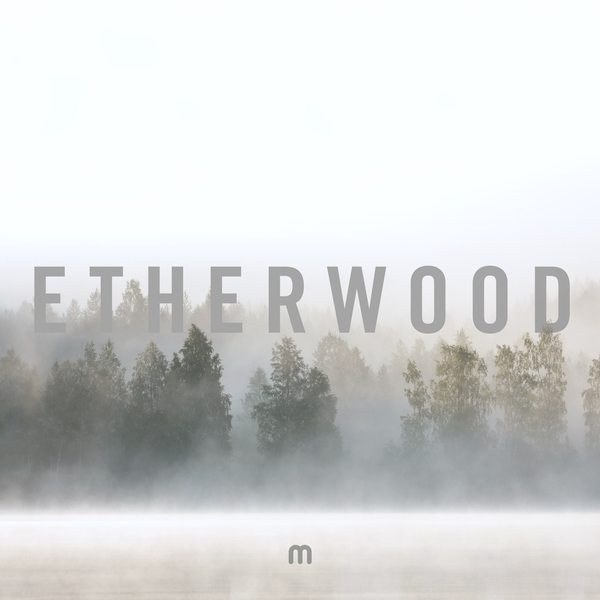 Etherwood - In Stillness [Med School][MEDIC77](2018)